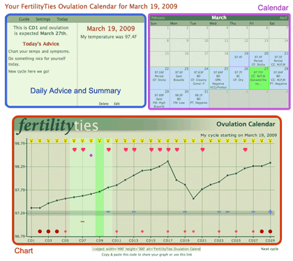 Example of Daily Summary for Ovulation Calendar